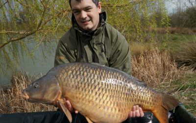 main lake common xlcarp fisheries ingatestone