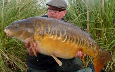 valley mirror xlcarp fisheries ingatestone
