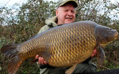 common xlcarp fisheries ingatestone