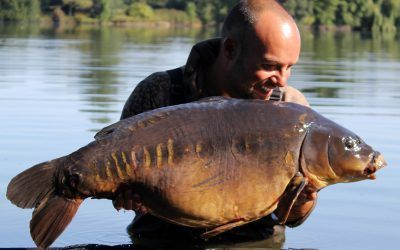main lake mirror 3 xlcarp fisheries ingatestone