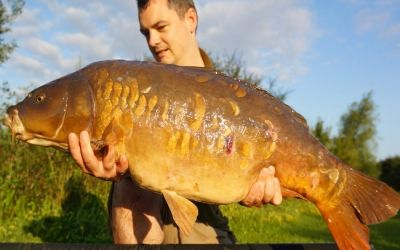 Matthew Brooks with The Pretty One - 31lb 4oz