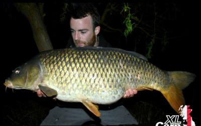 Tom Scullion XL Carp Common 23lb 6oz