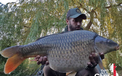 JohnCroome27lbCommonXLCARPLogo2 xlcarp fisheries ingatestone