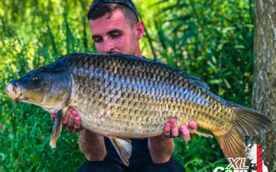 Tommy Flower 20common2 XLCarp L2 xlcarp fisheries ingatestone