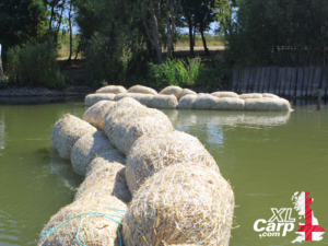 Recent scorching temperatures have seen many venues in the country suffer from algae blooms so to prevent this problem before it got chance to take a grip we decided to fight it head on. The barley straw sausages, all perfectly formed and ready for action. Between us we created several barley straw sausages and staked